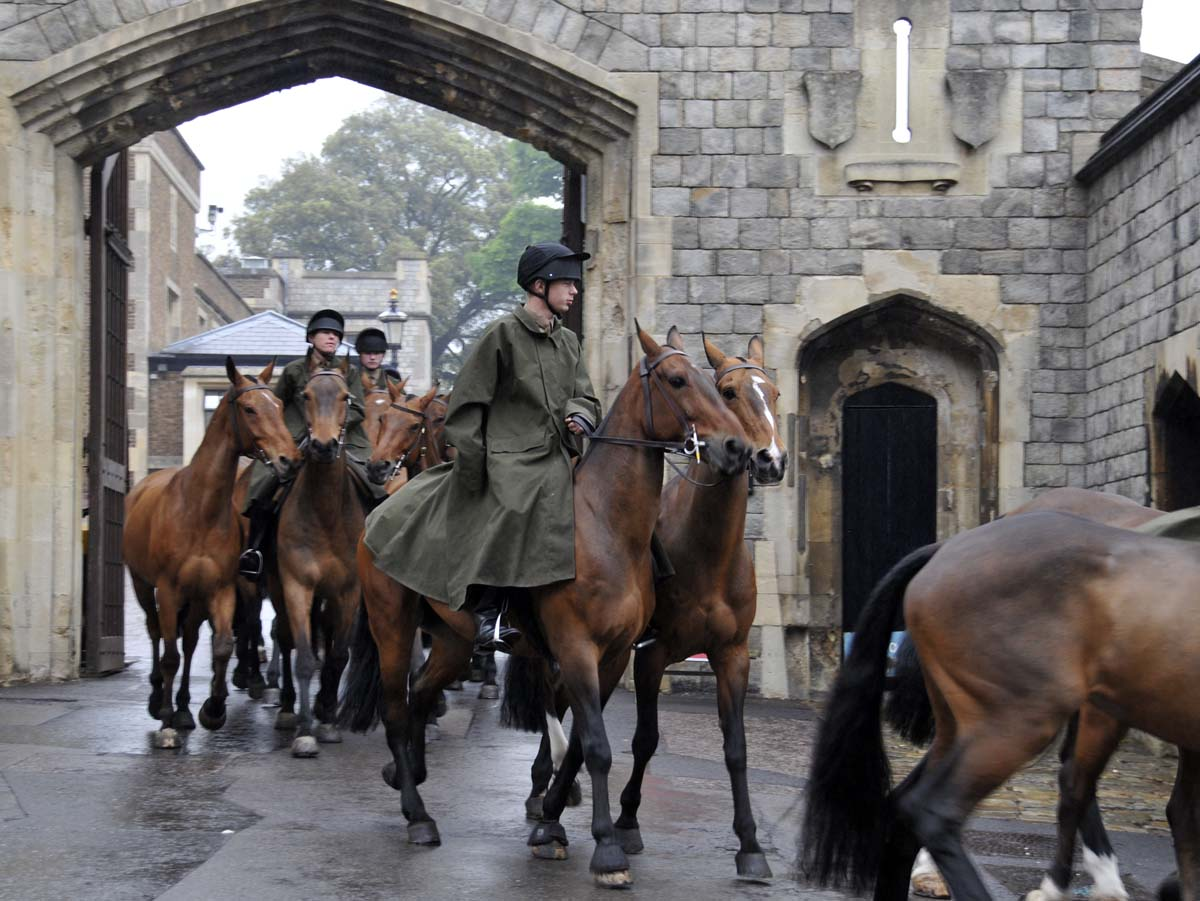 a portion of the large contingent of King's Troops horses, leaving the Royal Mews this morning for their daily exercise walk