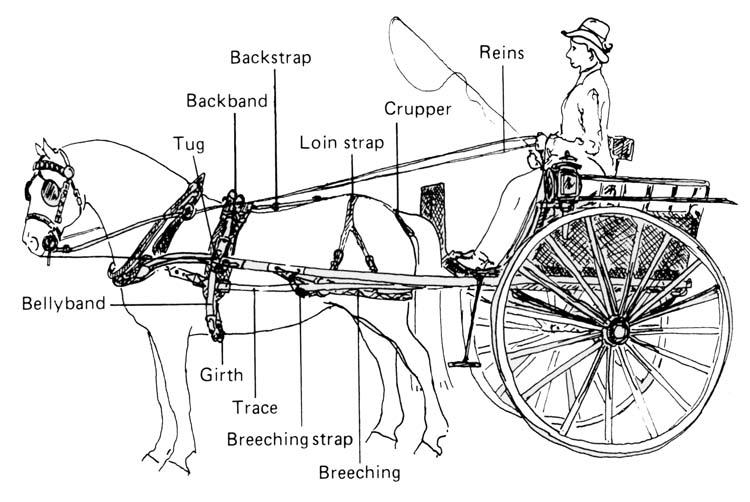 KARET TRAILER WIRING DIAGRAM - Auto Electrical Wiring Diagram on
