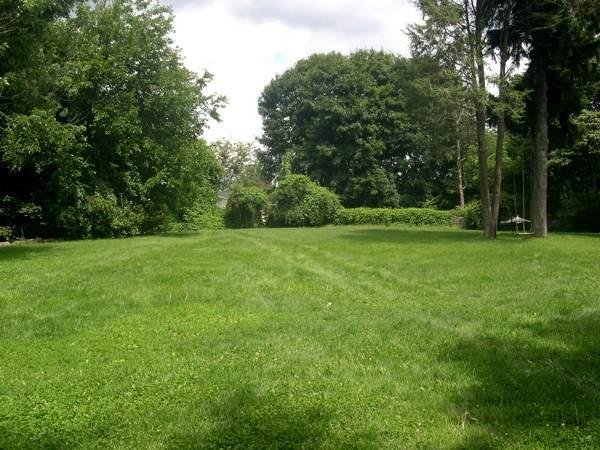 great lawn 2