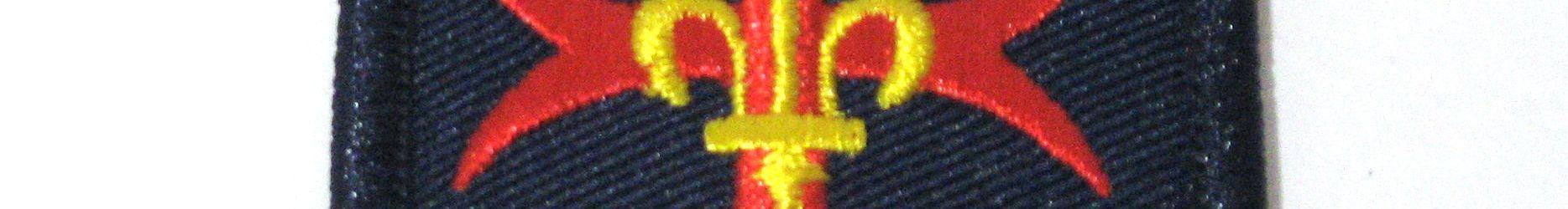 Insigne croix tissée FNE