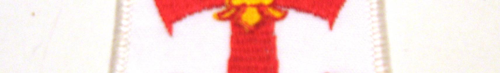 Insigne croix tissée marine (AABP)