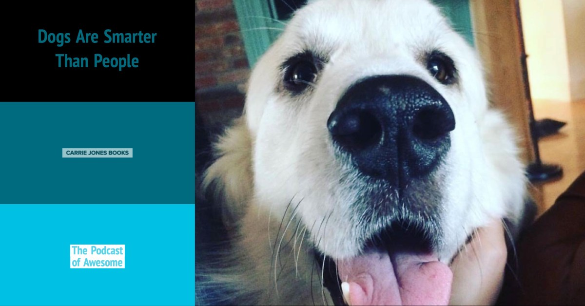Writing With Dogs Who Slobber: The Three Secrets to Awesome Characters