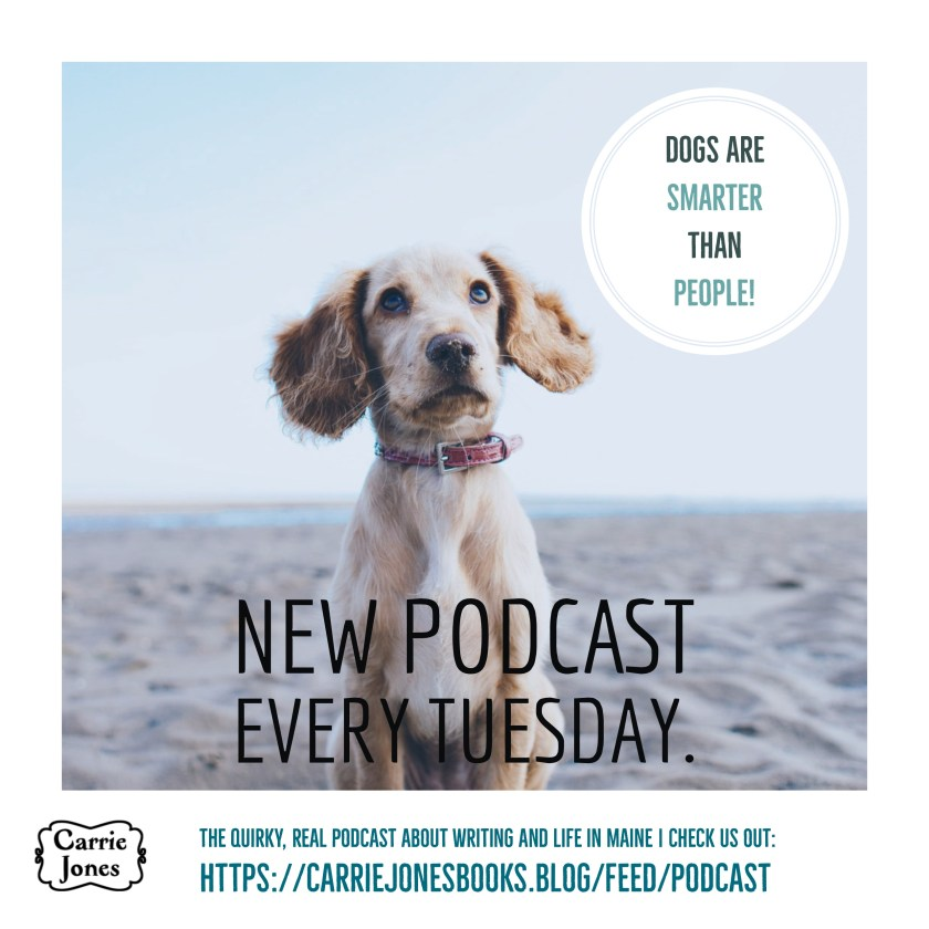 Dogs are Smarter Than People, the podcast