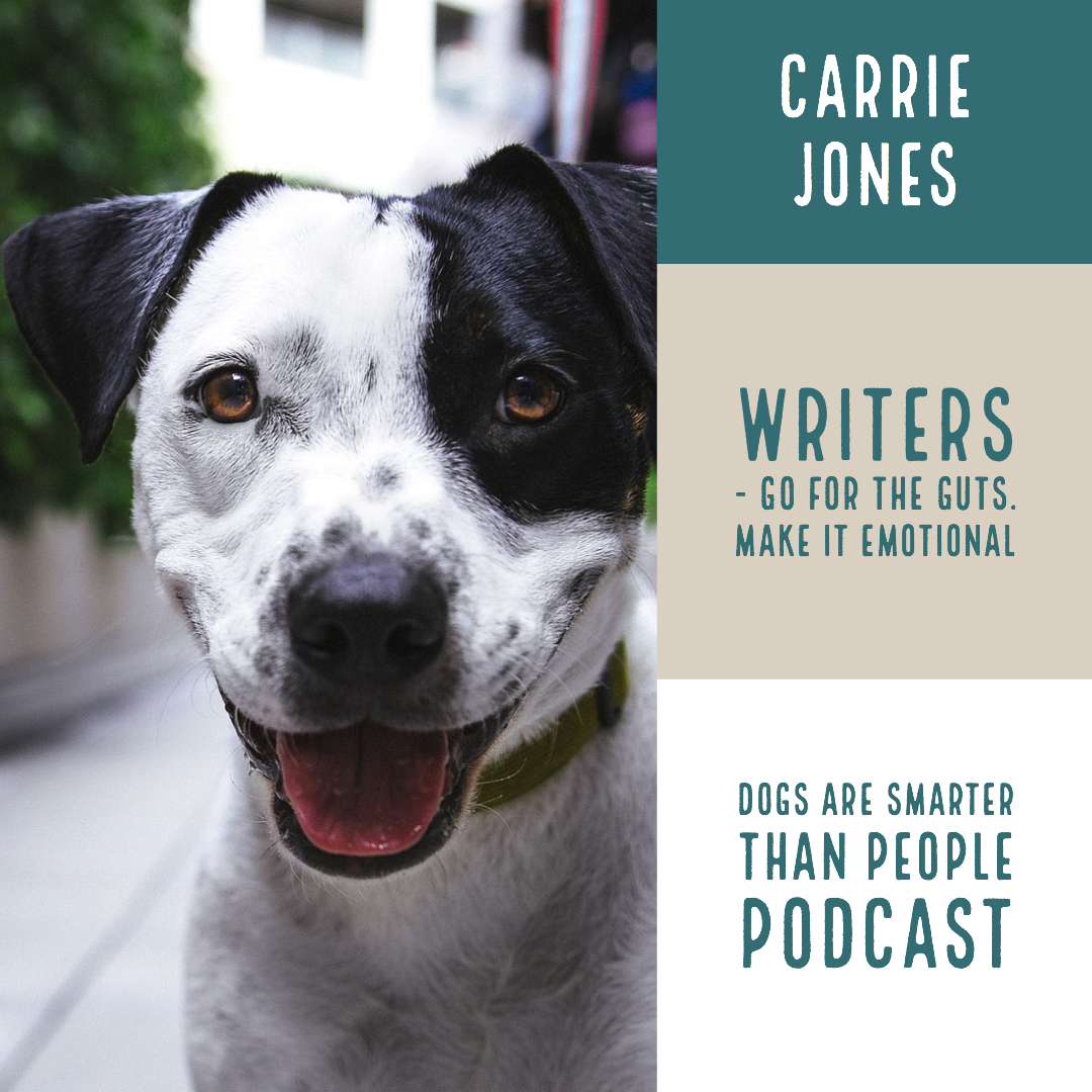 Dogs Are Smarter Than People Podcast and Camper Update!