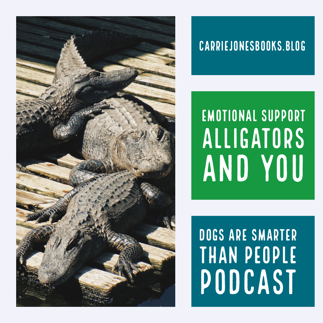 Emotional Support Alligators, Brooklyn 99 and You