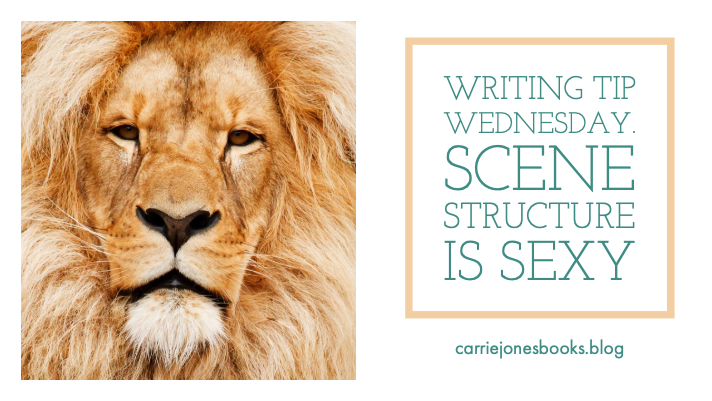Writing Tip Wednesday Scene Structure is Sexy