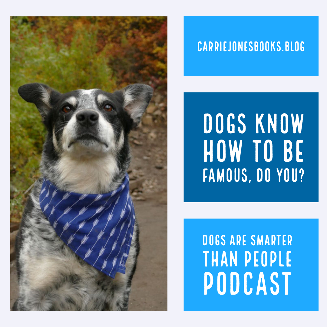 Dogs Know How to Be Famous, Do You? How to handle being popular