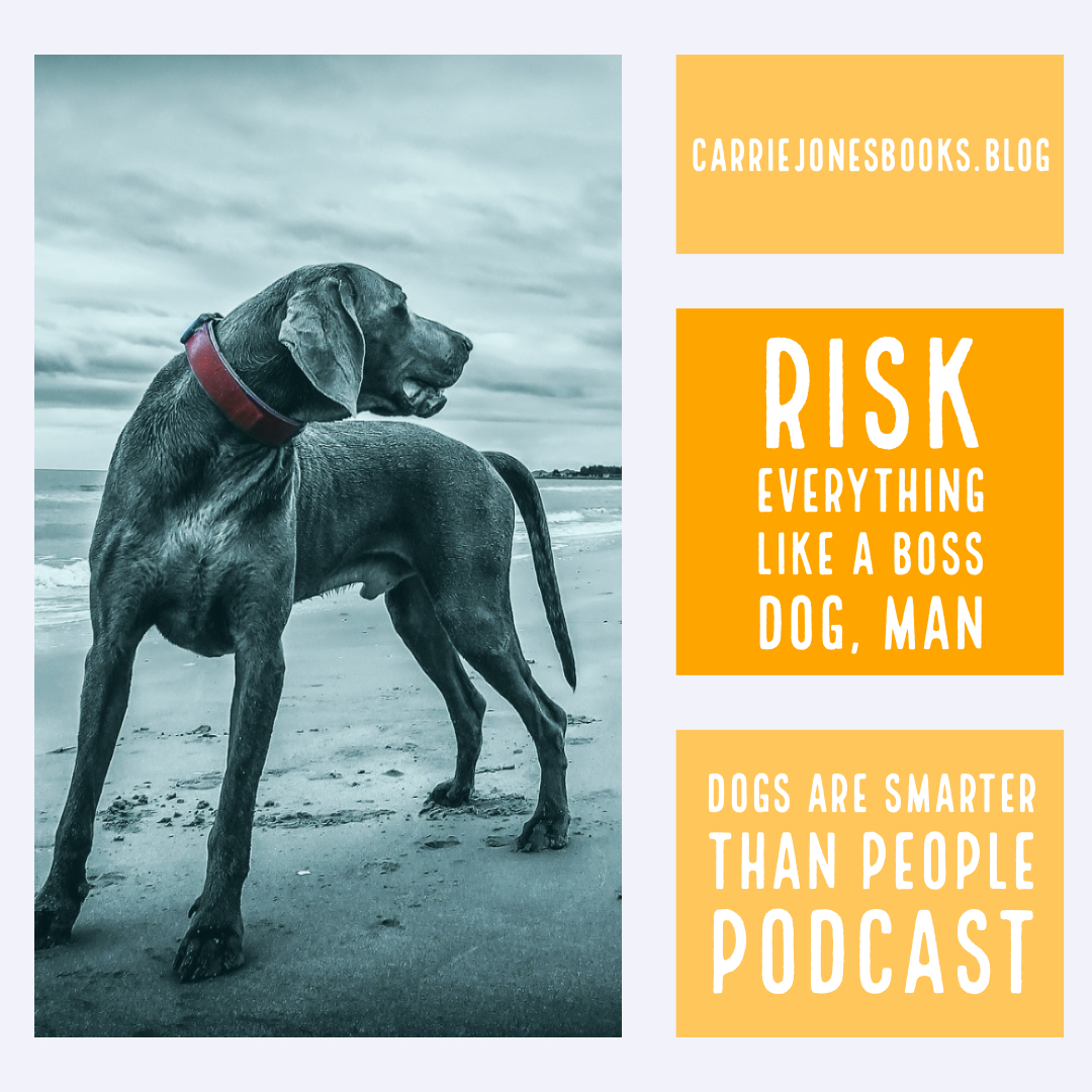 Risk Everything Like a Boss Dog