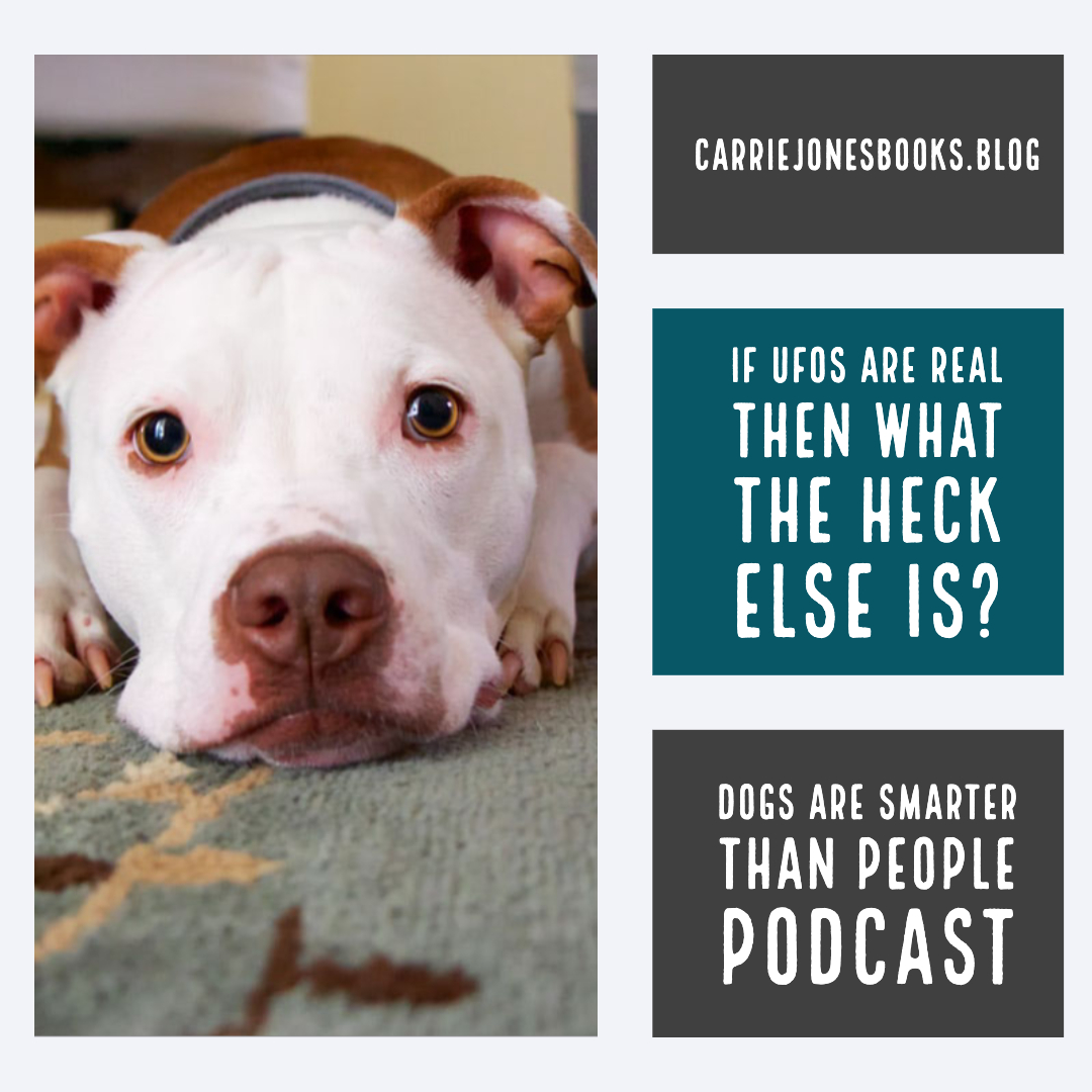 If UFOs Are Real Then What the Heck Else Is, Dogs are Smarter Than People podcast