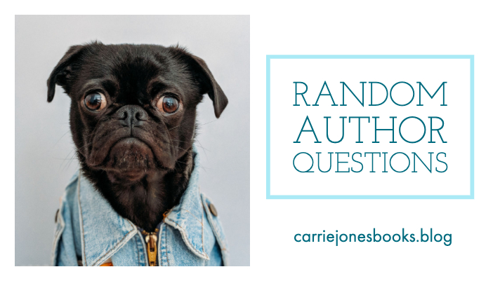 Author Questions Answered