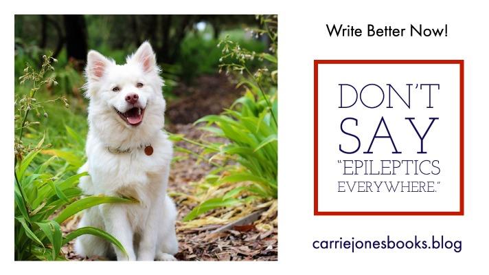 "Don't Say ""Epileptics Everywhere."""
