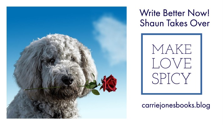 Make Love Spicy