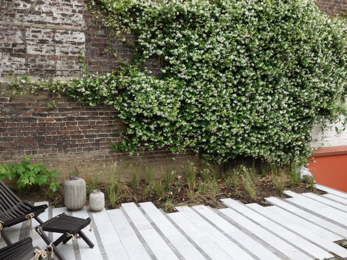 Terrasse brut de sciage et moellons civés