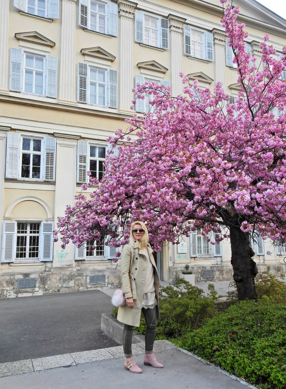 Cherry Blossom Tree, Trench Coat, Studded Booties, Chloe Drew Bag, carrieslifestyle, Dior Sunglasses