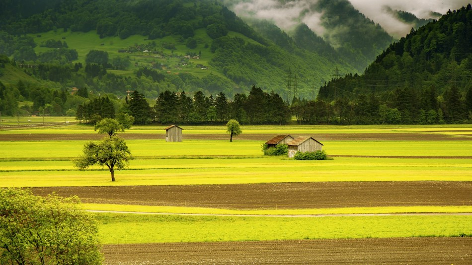 landscape-176602_1920 (1)