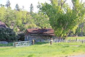 Golden Valley Co Ryegate Simms-Garfield Ranch NR 4