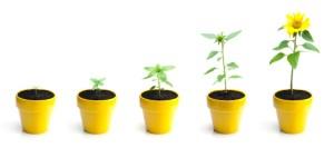 Building reputations: PR for SMEs