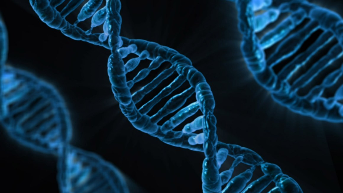 Are DNA Testing Companies Trustworthy?
