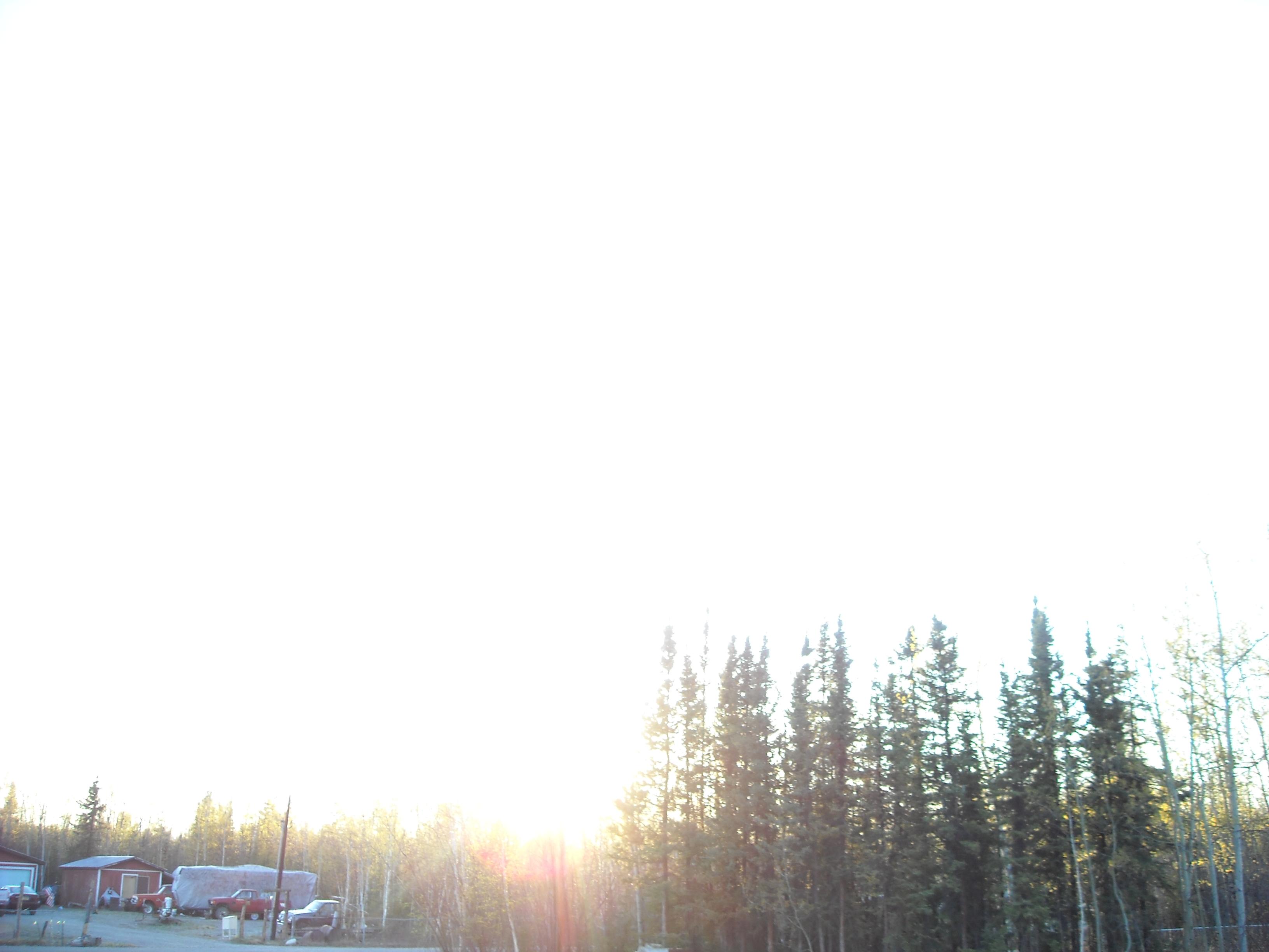 sun 008