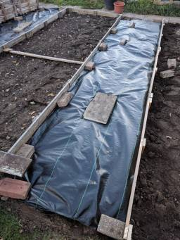 Carrot Tops Allotment plastic sheeting