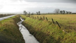 Nov 2010 Ebberston ditch