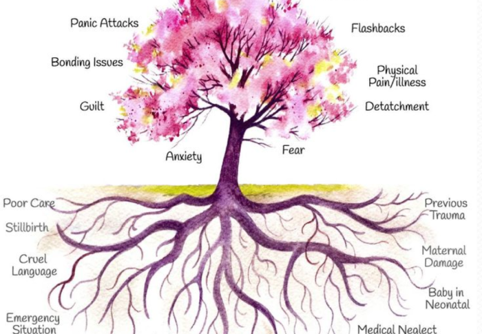 The Trauma Tree – Understanding The Impact Of Childhood Trauma