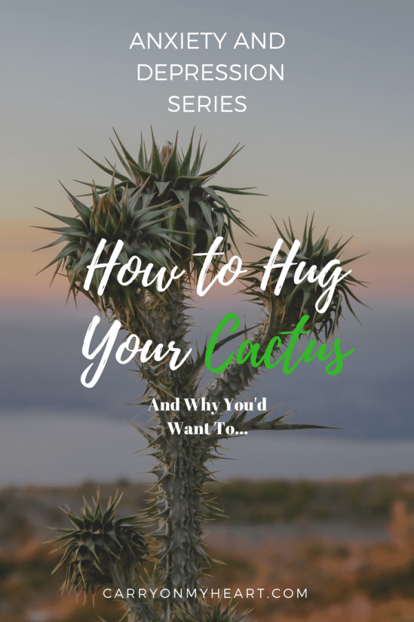 Anxiety and Depression Series – (8) How to Hug Your Cactus