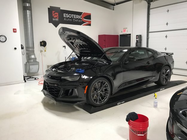 paint protection film full car view