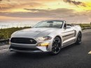 Best Mustang 2019 New Interior