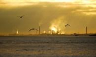 F mira CC - poluição