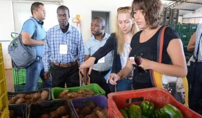 Programa de Aquisição de Alimentos PAA agricultura familiar