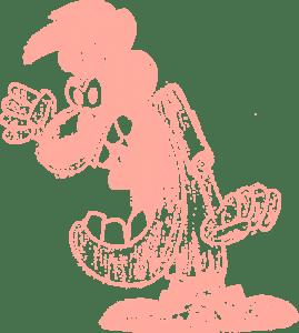 ofendidito-salmon