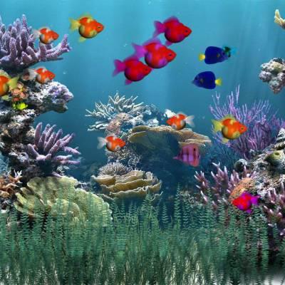 Salvapantallas animado con peces