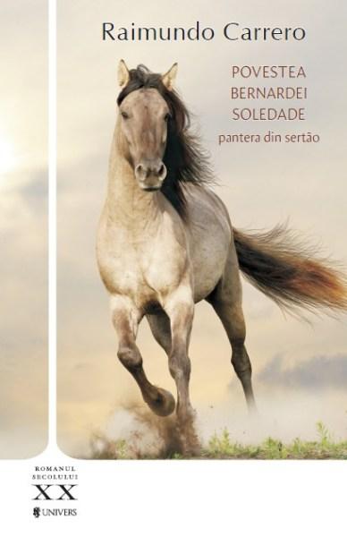 Povestea Bernardei Soledade
