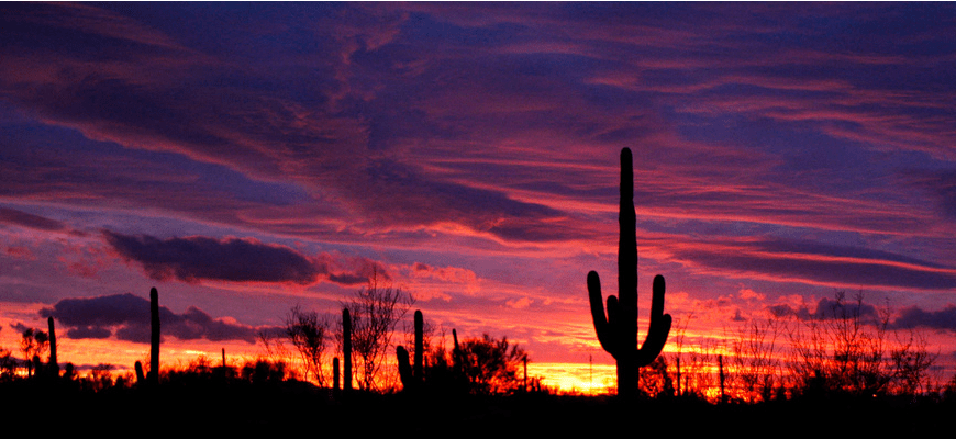 Arizona Purple Sun Sets