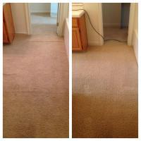 Folsom Carpet Cleaning Archives   Carters Carpet Restoration