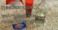 Best Spot Remover For Carpet