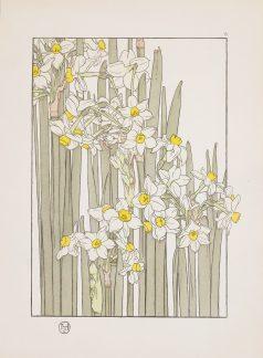 Fleurs art nouveau