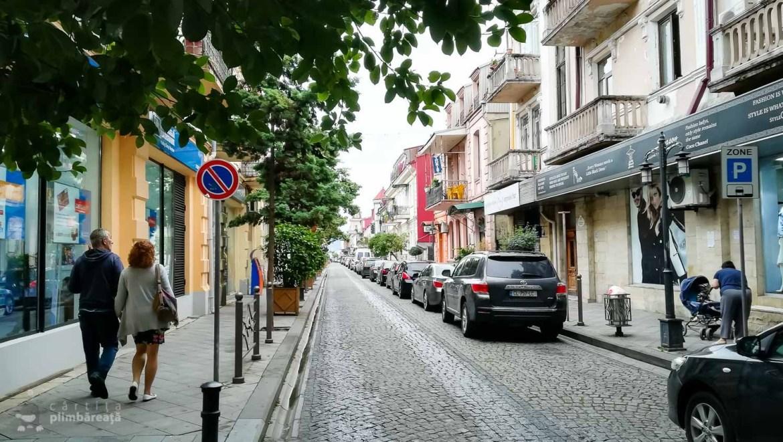 Staduta faina prin centrul turistic, in drum spre Batumi Piazza