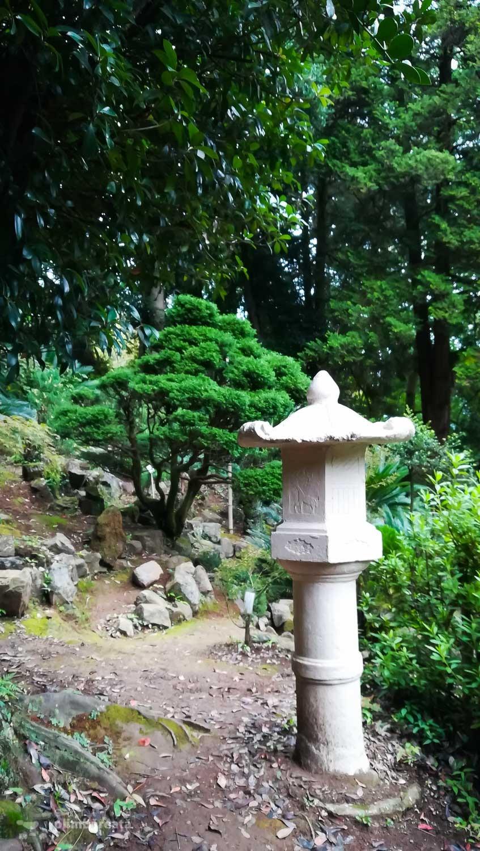 Un fel de mini gradina japoneza
