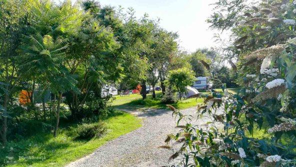 Camping Carta Fagaras Sibiu_21
