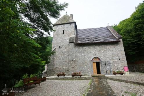 Castelul din Carpati sau Cetatea Colt_02