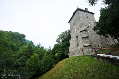 Castelul din Carpati sau Cetatea Colt_05
