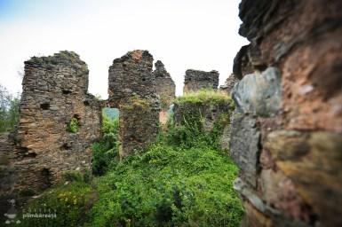 Castelul din Carpati sau Cetatea Colt_13