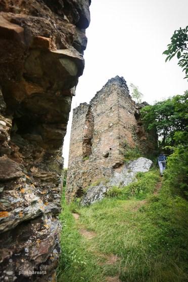 Castelul din Carpati sau Cetatea Colt_17