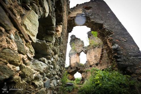 Castelul din Carpati sau Cetatea Colt_26