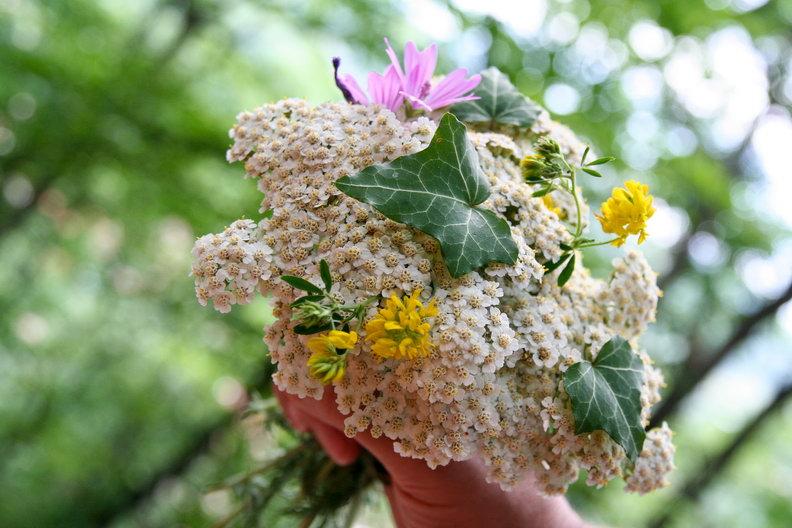 Buchet de flori culese pe traseu