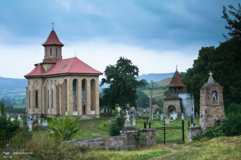 Biserica din Bogata Olteana