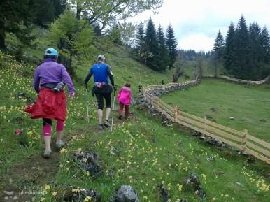 EcoMarathon - experienta forte la primul maraton montan_12