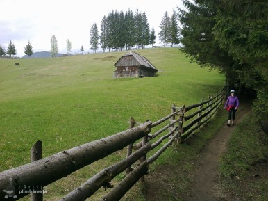 EcoMarathon - experienta forte la primul maraton montan_17